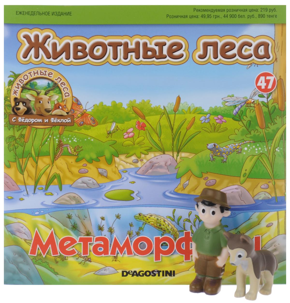 животные леса журнал